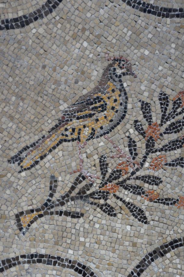 aquileia mosaic
